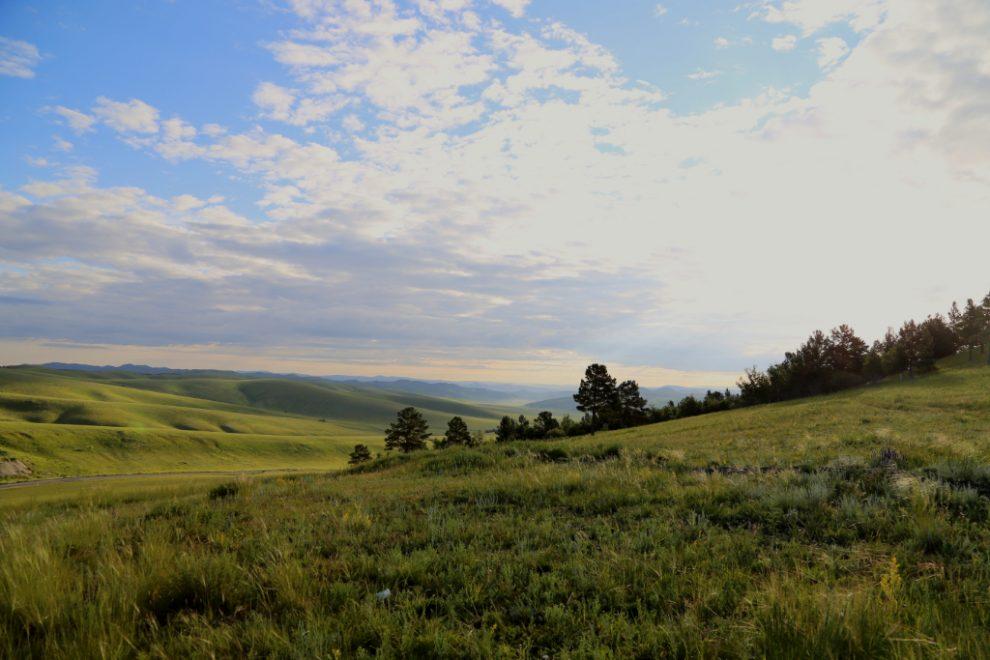 Туризм в Монголию почти полностью остановлен